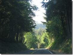 4051 US 101 between Nehalem & Seaside OR