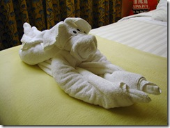 5137 Dog Towel MS Westerdam