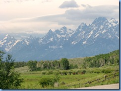 8789 Grand Teton National Park WY