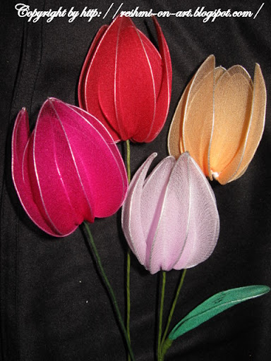 stocking-tulip-flowers