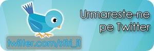 Follow_us_on_Twitter_by_vladgidea