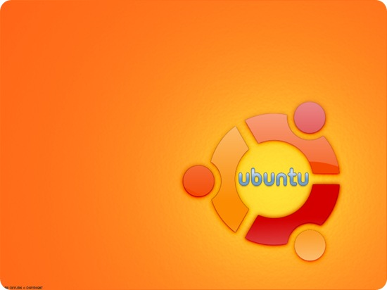Linux_Ubuntu_Wallpaper_by_RA3IISKYLINE