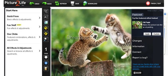 Picture2Life 20 Useful free Online Image Editor
