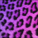 GO Keyboard Girly Cheetah icon