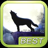 Wolf Howl Sound Shake