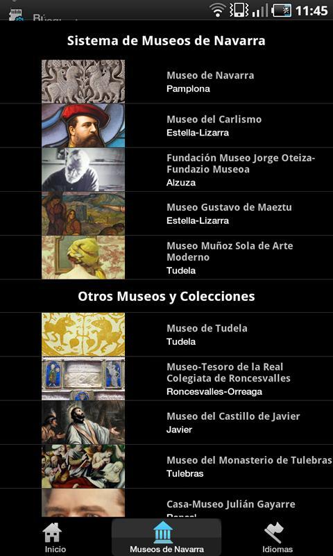 Museums of Navarre- screenshot