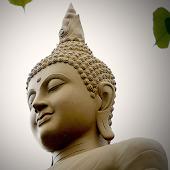 Kinh Tăng Chi Bộ - Phật Pháp