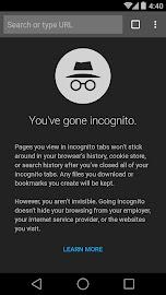 Chrome Browser - Google Screenshot 6