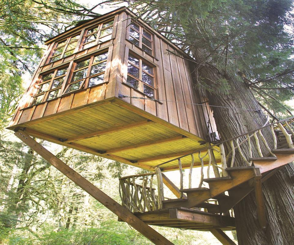 DIY Tree House Ideas Android Apps on Google Play