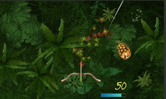 Screenshot of Two Player Fruit Shoot