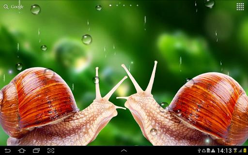 Rain Live Wallpaper 1.0.9 screenshots 11