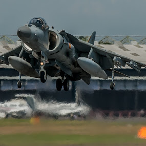 hover  by Mark Usher - Transportation Airplanes ( plane, 2014, sea harrier, sea, hover, airshow )