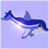 Baby Dolphin Bay