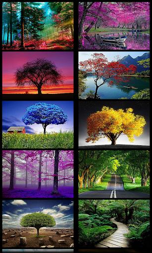 3D Tree Wallpaper