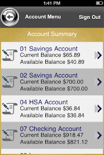 PPG and Associates FCU - screenshot thumbnail