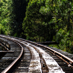 Curved railway bridge by Peter Keast - Transportation Railway Tracks ( railway, track, rail, train, bridge )