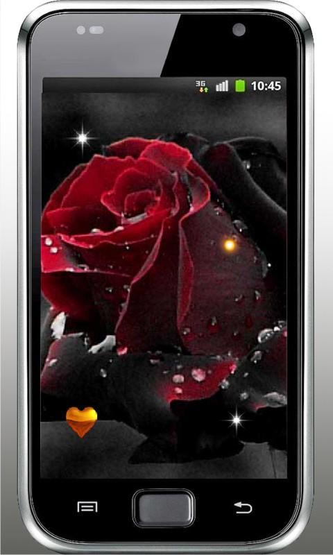 Gothic Rose Live Wallpaper- screenshot