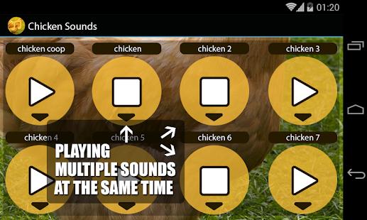 玩娛樂App|雞聲音免費|APP試玩