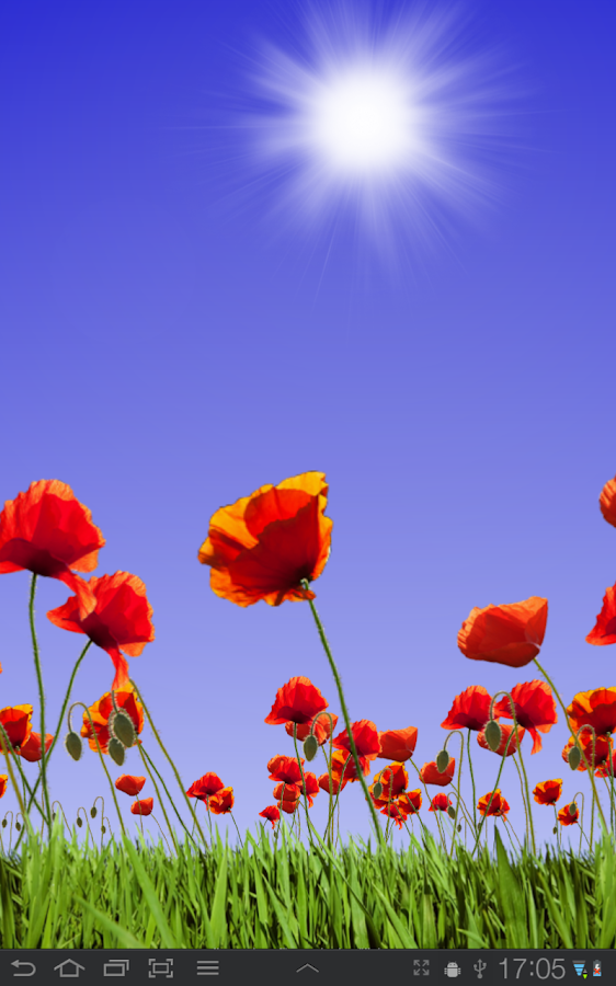 Poppy Field Free- screenshot