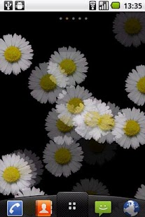 White Flower Live wallpaper - screenshot thumbnail