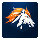 Denver Football FanSide