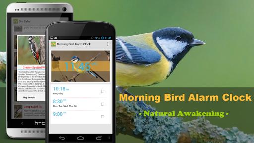 Bird Quiz Alarm Clock