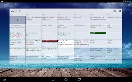 Business Calendar Pro Screenshot 15