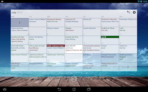 Business Calendar Pro Screenshot 15