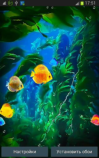 Аквариум Живые Обои 3D