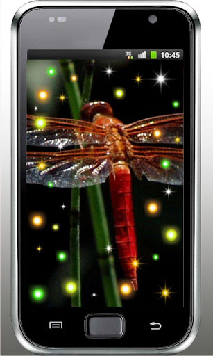 Dragonfly Free live wallpaper