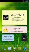 Screenshot of Pregnancy Due Date Widget