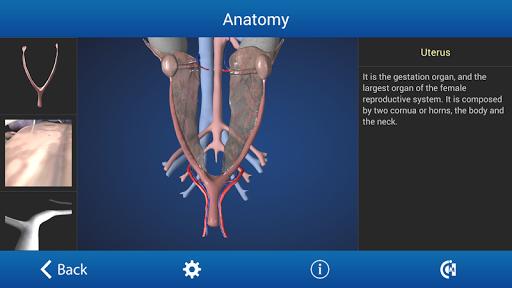 免費下載醫療APP|Ovariectomy in Dogs (Free) app開箱文|APP開箱王