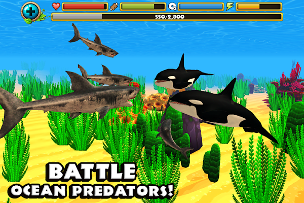 Wildlife Simulator: Shark - screenshot
