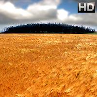 Wallpapers HD Lenovo 1.0