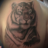 Tattoo Tigers Images