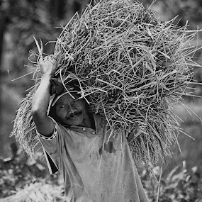 burden on the shoulders by Assaifi Fajarmass - People Professional People ( black and white, human interest, man )