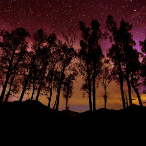 aurora at bromo by Andrie Fery - Landscapes Mountains & Hills