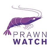 Prawn Watch