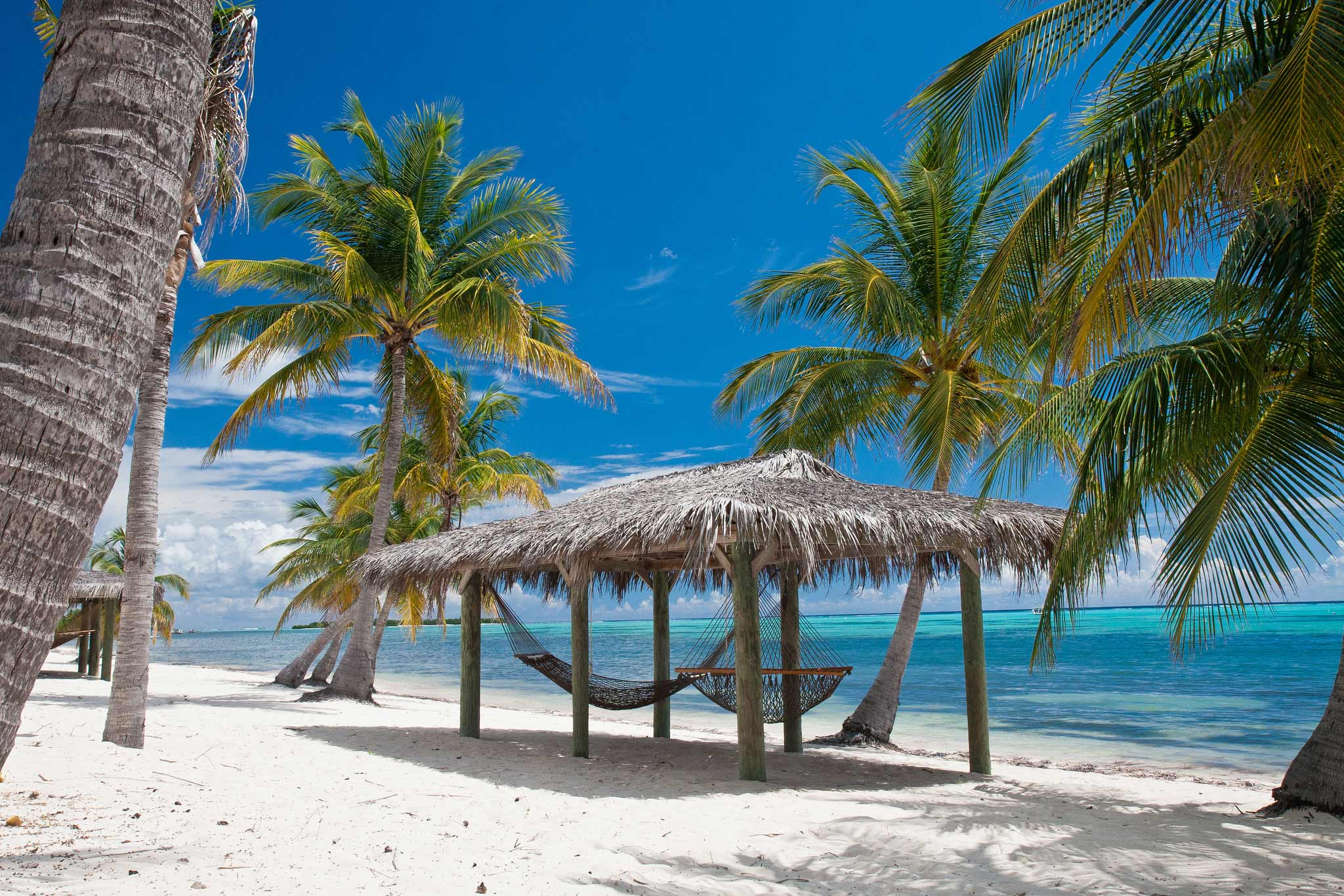 Pull up a hammock on the beach on Little Cayman.