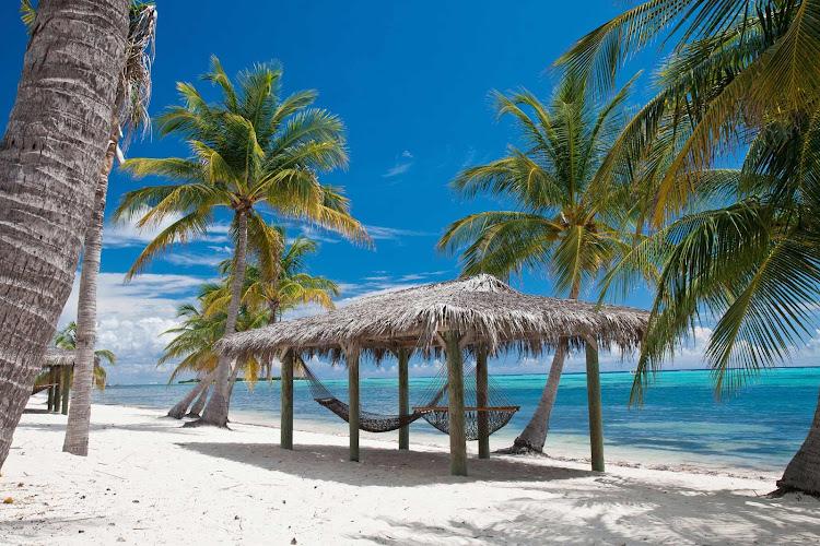 Pull up a hammock on the beach on Little Cayman.
