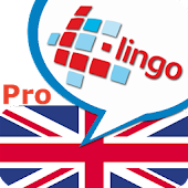 L-Lingo Learn English Pro