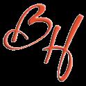 Berita Harian Online icon