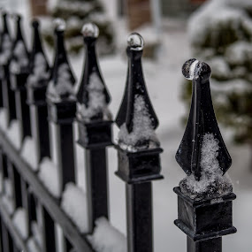 Frozen Tears by Donna Brittain - Artistic Objects Still Life ( fence, winter, canada, ice, snow )