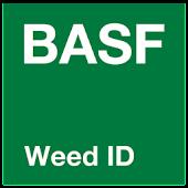 Weed ID