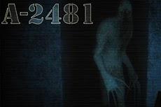 A-2481のおすすめ画像2