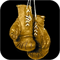 Boxing HD logo