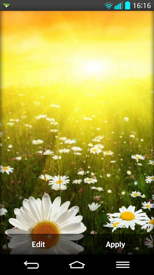 Musim semi Kertas Dinding - Apl Android di Google Play