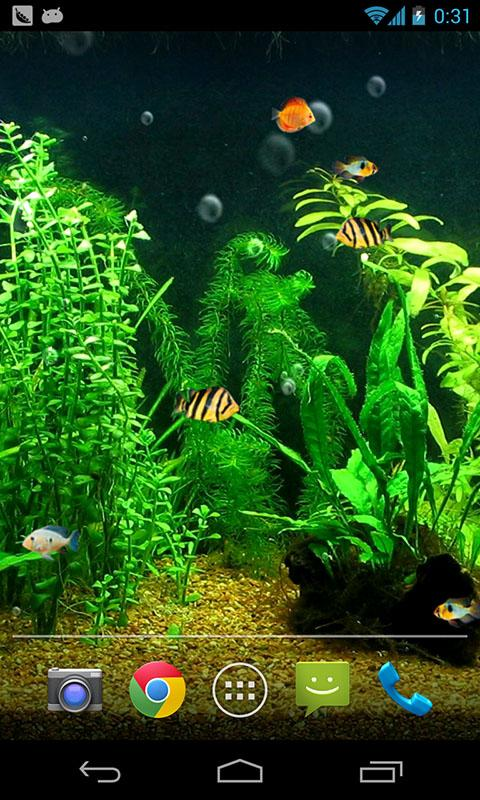 Fish tank hd live wallpaper android apps on google play for Live fish store