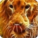 Lion Fire Live Wallpaper icon