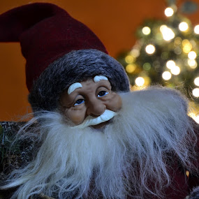 by Lidia Noemi - Public Holidays Christmas (  )